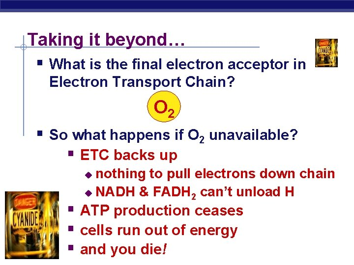 Taking it beyond… § What is the final electron acceptor in Electron Transport Chain?