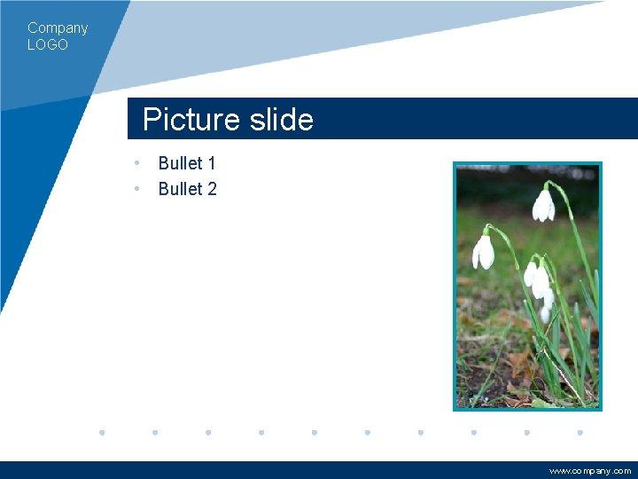 Company LOGO Picture slide • Bullet 1 • Bullet 2 www. company. com