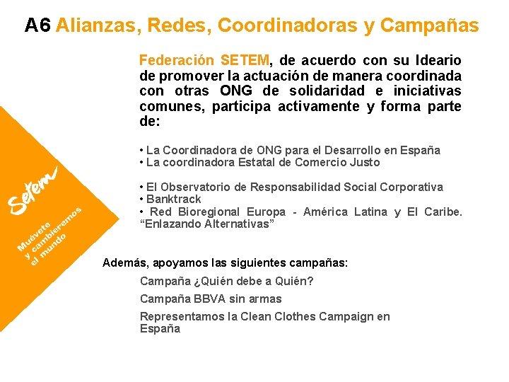 A 6 Alianzas, Redes, Coordinadoras y Campañas Federación SETEM, de acuerdo con su Ideario