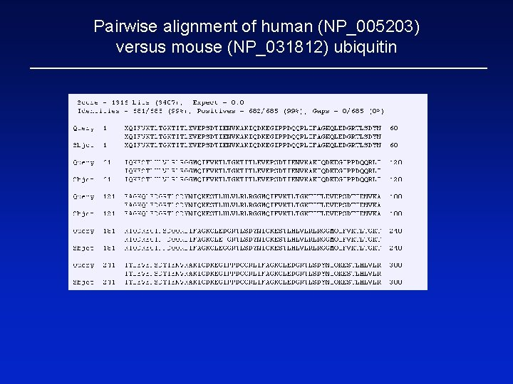 Pairwise alignment of human (NP_005203) versus mouse (NP_031812) ubiquitin