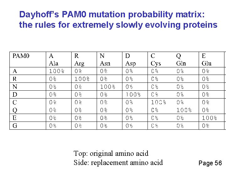Dayhoff's PAM 0 mutation probability matrix: the rules for extremely slowly evolving proteins Top: