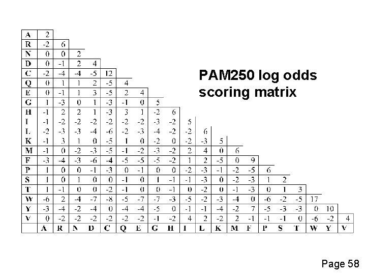 PAM 250 log odds scoring matrix Page 58