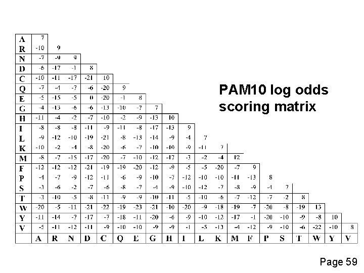 PAM 10 log odds scoring matrix Page 59
