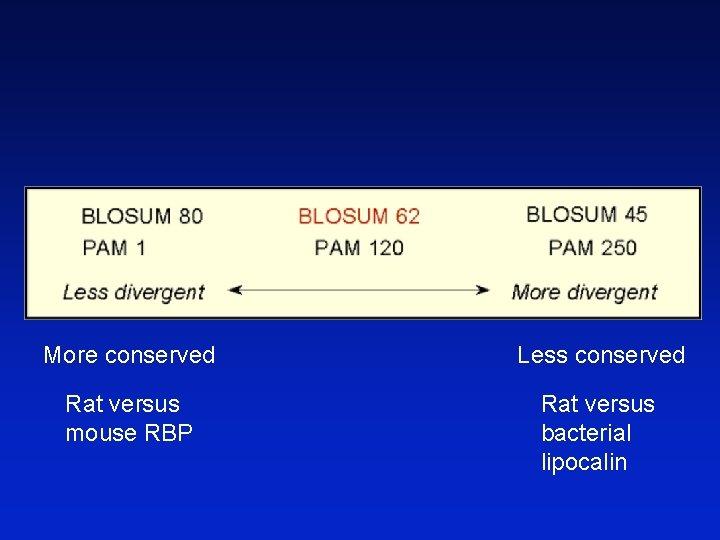 More conserved Less conserved Rat versus mouse RBP Rat versus bacterial lipocalin