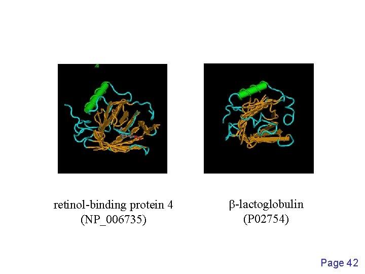 retinol-binding protein 4 (NP_006735) b-lactoglobulin (P 02754) Page 42