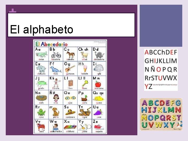 + El alphabeto