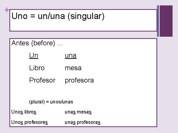 + Uno = un/una (singular) Antes (before). . . Un una Libro mesa Profesor