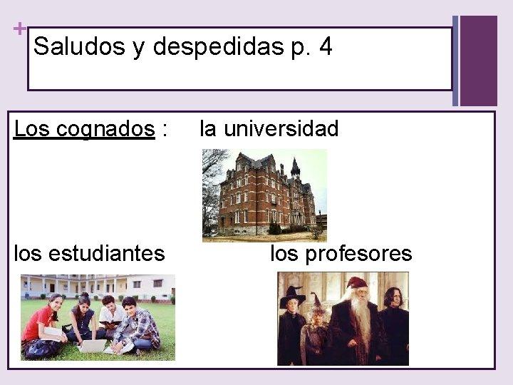 + Saludos y despedidas p. 4 Los cognados : los estudiantes la universidad los