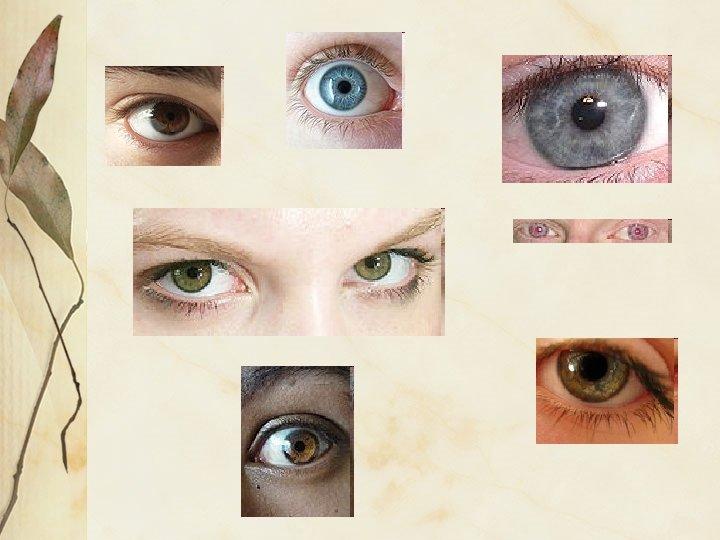 Mi a teendő, ha domináns szemed és domináns kezed nem egyezik? - Retina