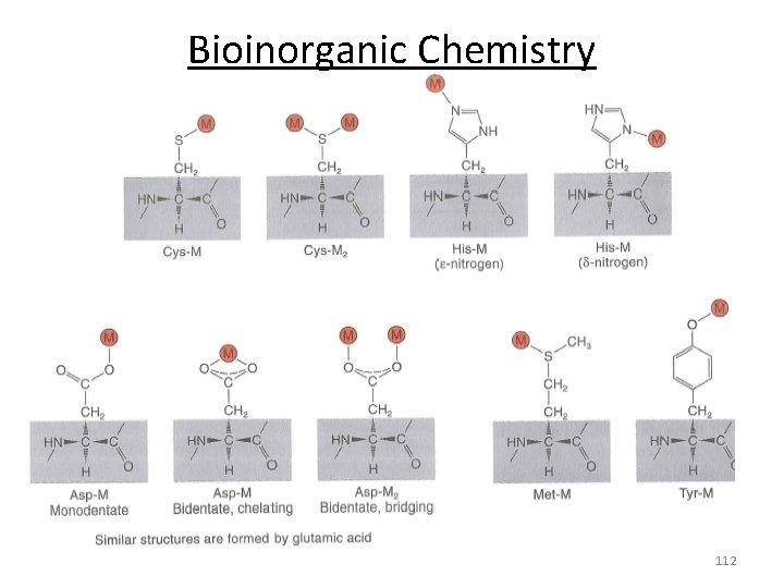Bioinorganic Chemistry 112