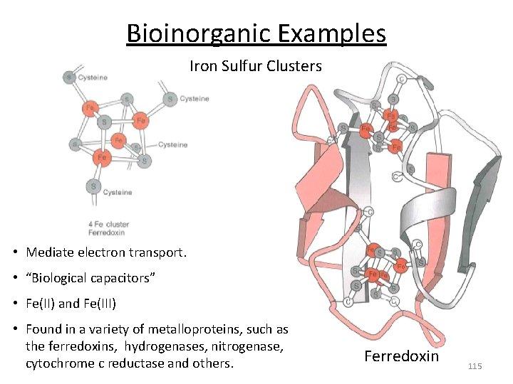 "Bioinorganic Examples Iron Sulfur Clusters • Mediate electron transport. • ""Biological capacitors"" • Fe(II)"