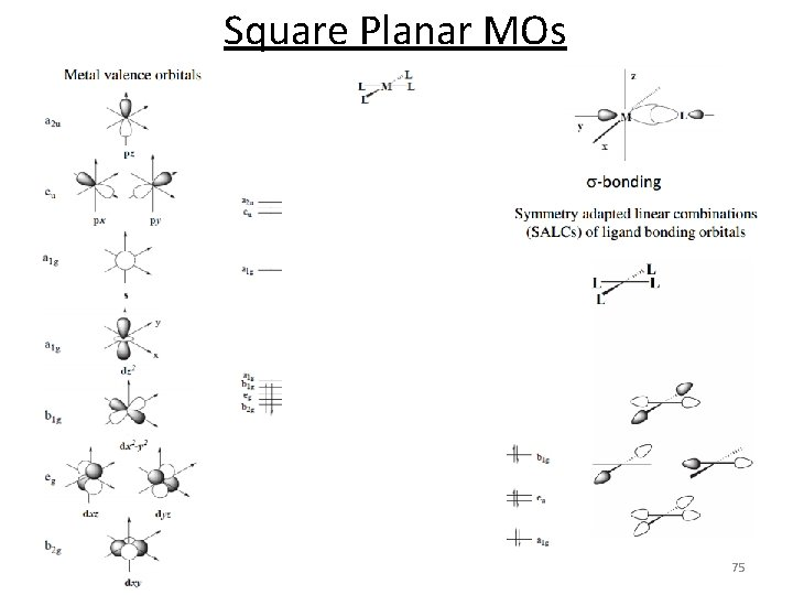 Square Planar MOs 75