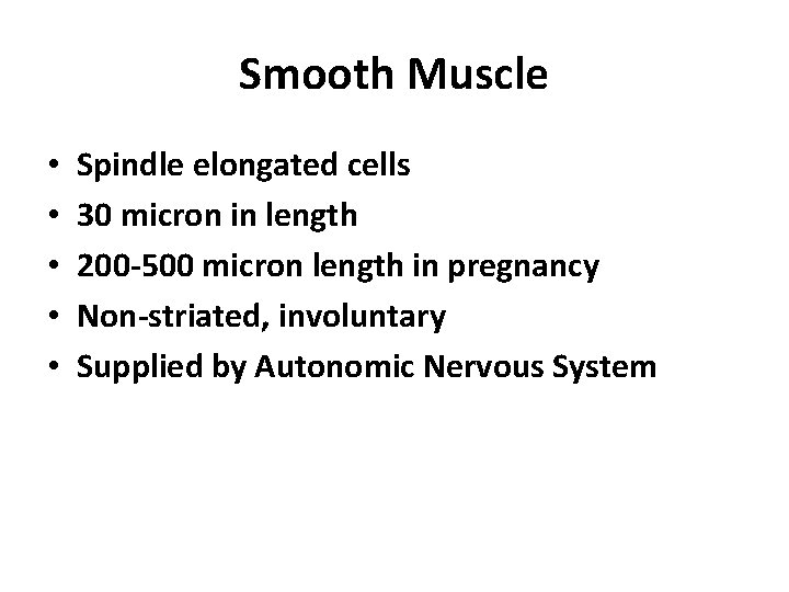 Smooth Muscle • • • Spindle elongated cells 30 micron in length 200 -500