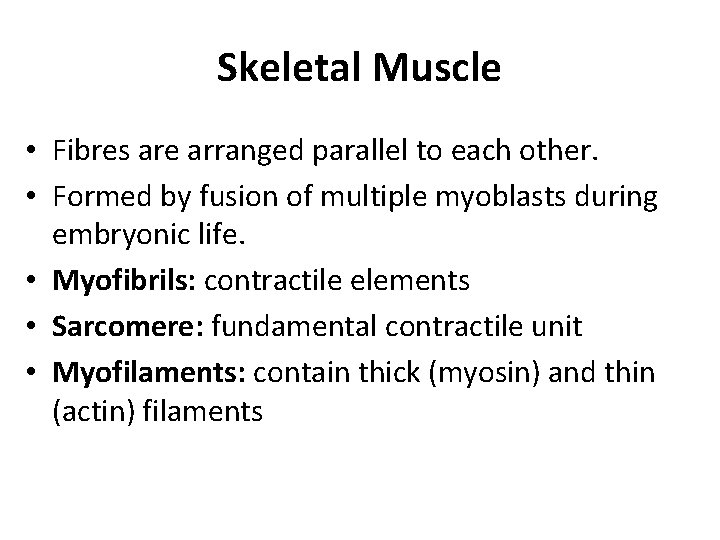 Skeletal Muscle • Fibres are arranged parallel to each other. • Formed by fusion