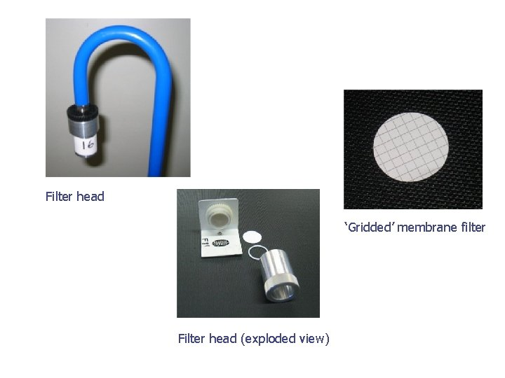 Filter head 'Gridded' membrane filter Filter head (exploded view)