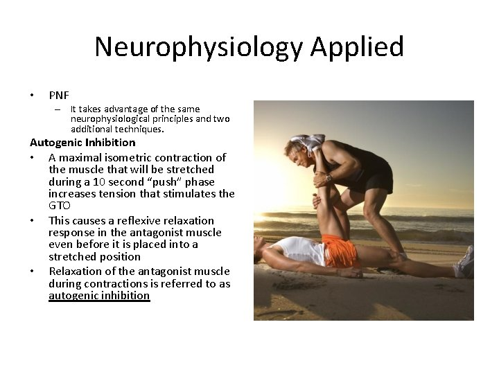 Neurophysiology Applied • PNF – It takes advantage of the same neurophysiological principles and