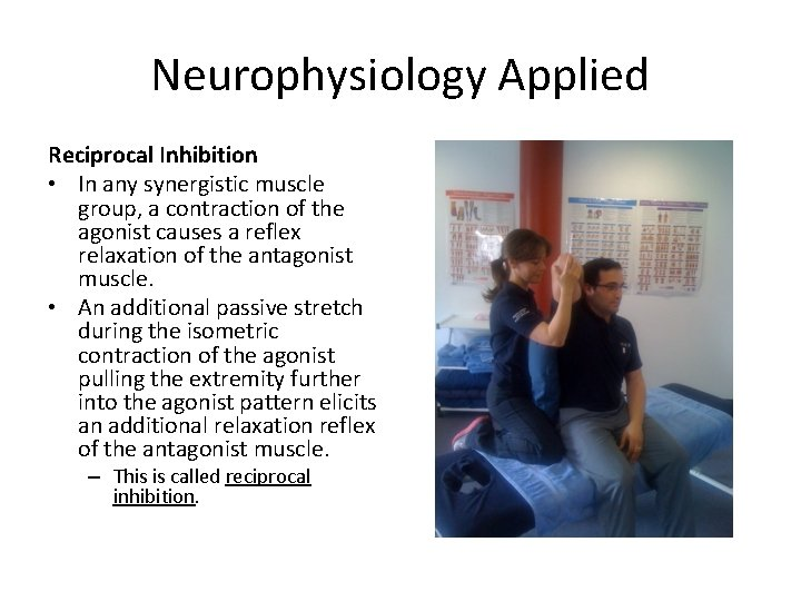 Neurophysiology Applied Reciprocal Inhibition • In any synergistic muscle group, a contraction of the