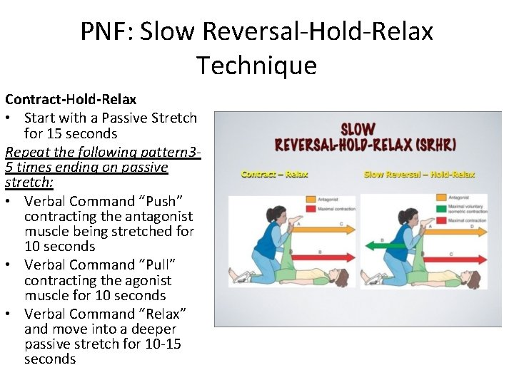 PNF: Slow Reversal-Hold-Relax Technique Contract-Hold-Relax • Start with a Passive Stretch for 15 seconds