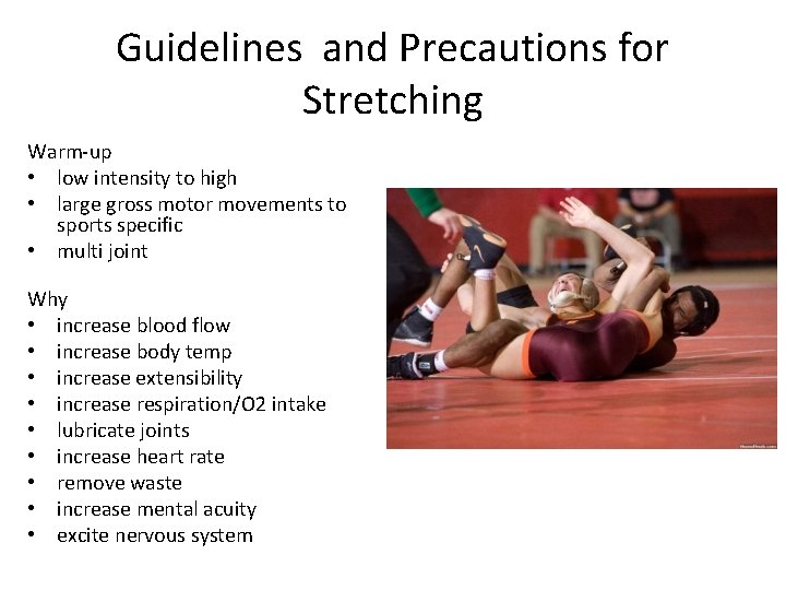 Guidelines and Precautions for Stretching Warm-up • low intensity to high • large gross