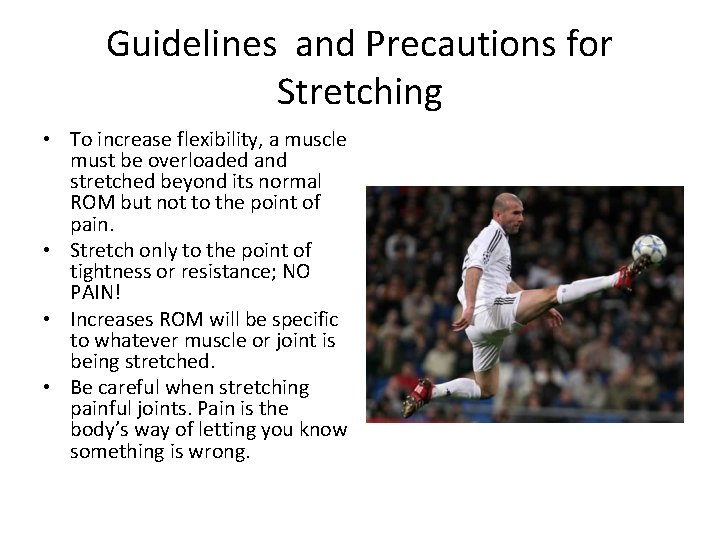 Guidelines and Precautions for Stretching • To increase flexibility, a muscle must be overloaded