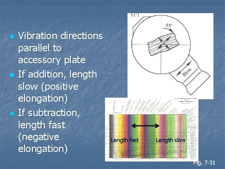 n n n Vibration directions parallel to accessory plate If addition, length slow (positive