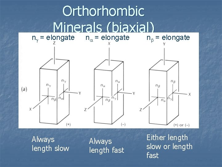 Orthorhombic Minerals (biaxial) ng = elongate Always length slow na = elongate nb =