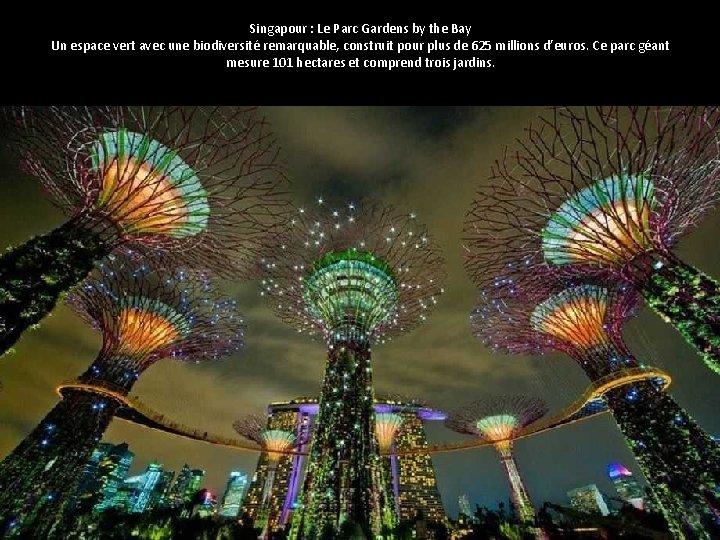 Singapour : Le Parc Gardens by the Bay Un espace vert avec une biodiversité