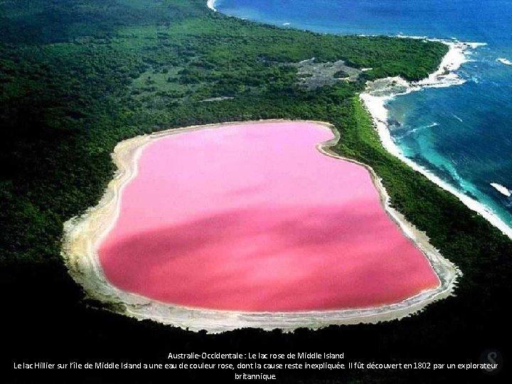 Australie-Occidentale : Le lac rose de Middle Island Le lac Hillier sur l'île de