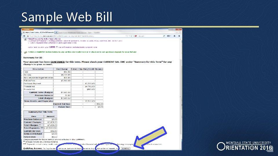 Sample Web Bill