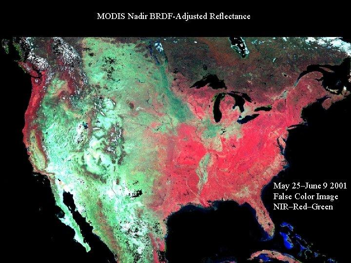 MODIS Nadir BRDF-Adjusted Reflectance May 25–June 9 2001 False Color Image NIR–Red–Green