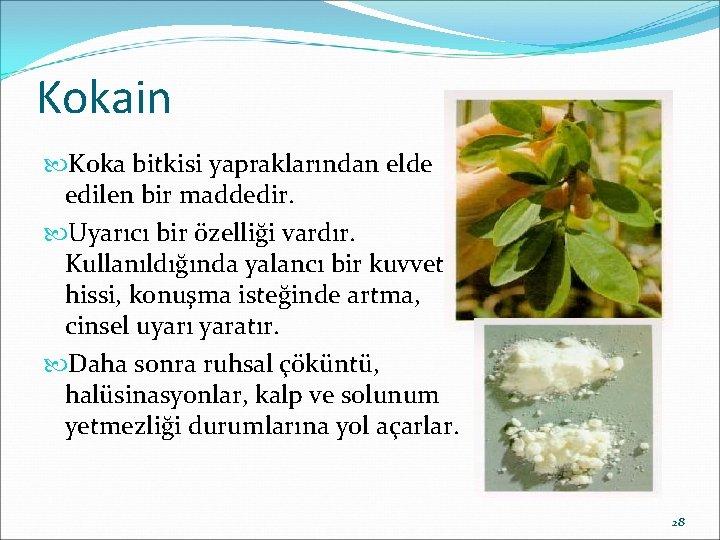 Kokain Koka bitkisi yapraklarından elde edilen bir maddedir. Uyarıcı bir özelliği vardır. Kullanıldığında yalancı