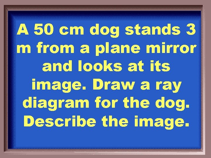A 50 cm dog stands 3 m from a plane mirror and looks at