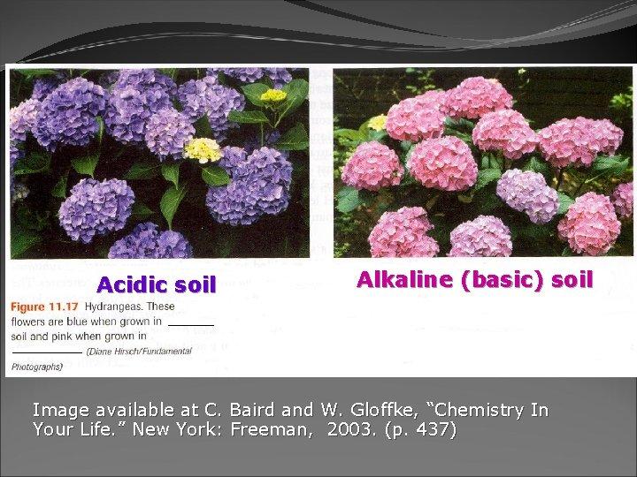 "Acidic soil Alkaline (basic) soil Image available at C. Baird and W. Gloffke, ""Chemistry"