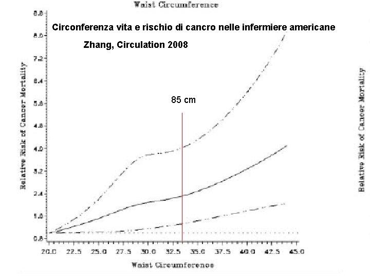 Circonferenza vita e rischio di cancro nelle infermiere americane Zhang, Circulation 2008 85 cm