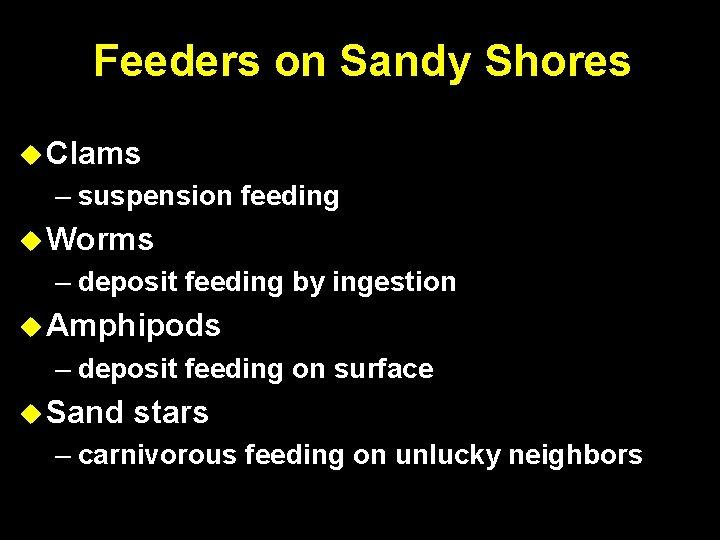Feeders on Sandy Shores Clams – suspension feeding Worms – deposit feeding by ingestion