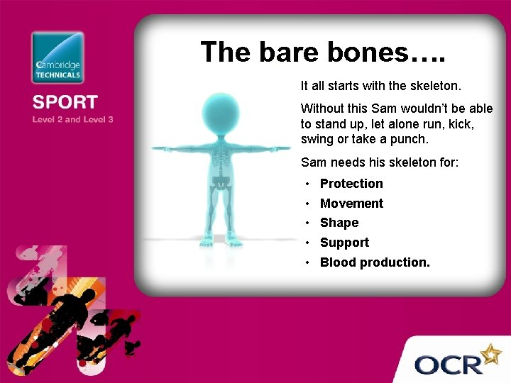 The bare bones…. It all starts with the skeleton. Without this Sam wouldn't be