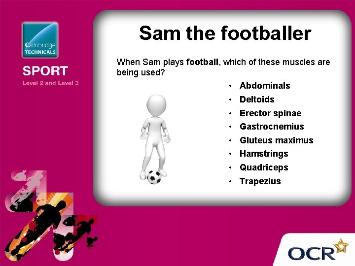 Sam the footballer When Sam plays football, which of these muscles are being used?