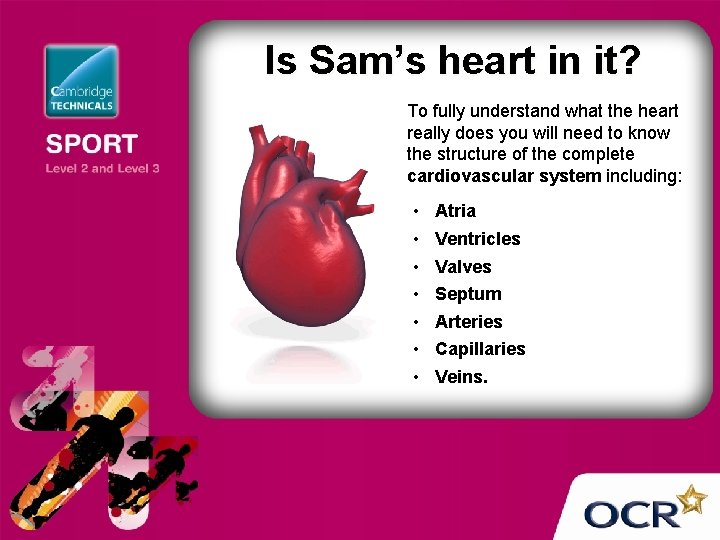 Is Sam's heart in it? To fully understand what the heart really does you