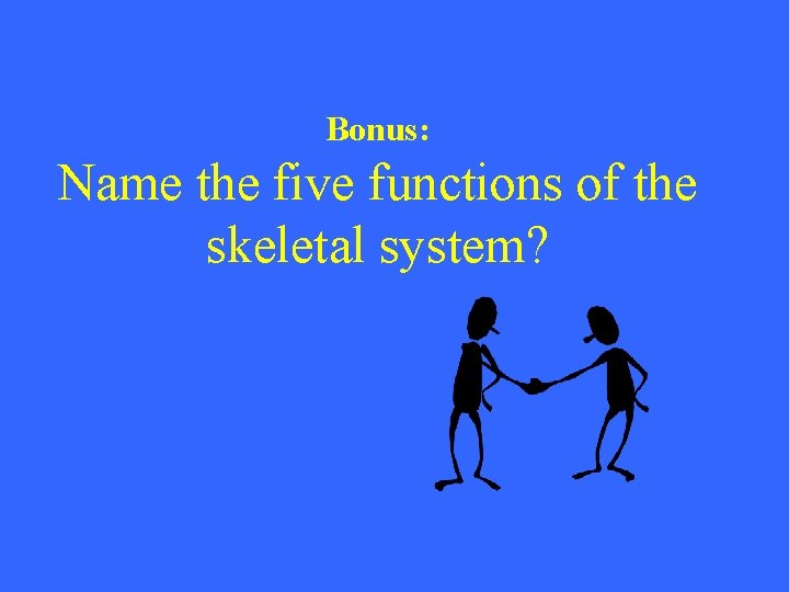 Bonus: Name the five functions of the skeletal system?