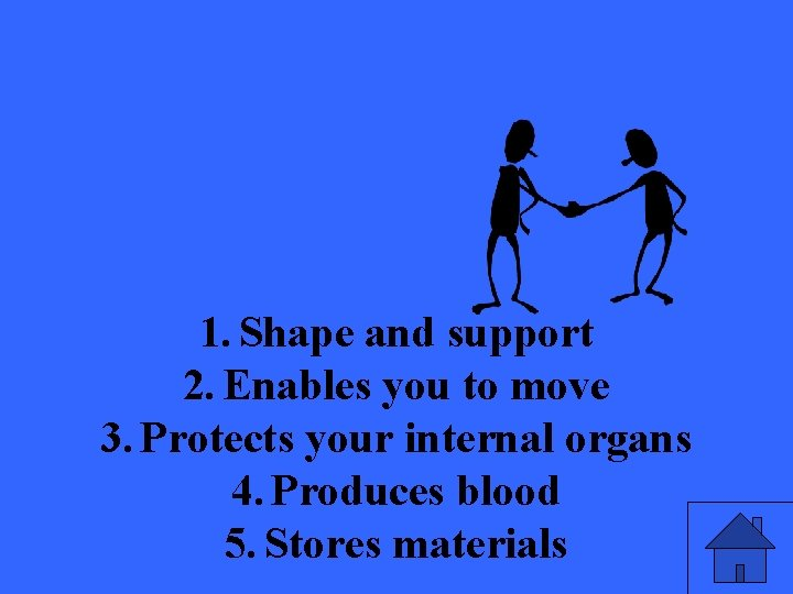 1. Shape and support 2. Enables you to move 3. Protects your internal organs