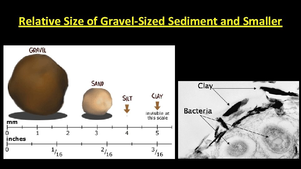 Relative Size of Gravel-Sized Sediment and Smaller