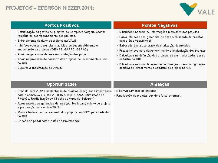 PROJETOS – EDERSON NIEZER 2011: Pontos Positivos • Estruturação da gestão de projetos do