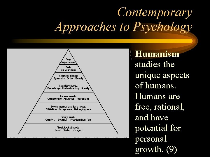 Contemporary Approaches to Psychology • Humanism studies the unique aspects of humans. Humans are