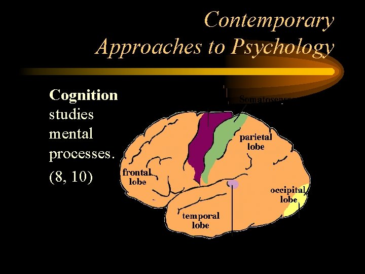 Contemporary Approaches to Psychology • Cognition studies mental processes. • (8, 10)