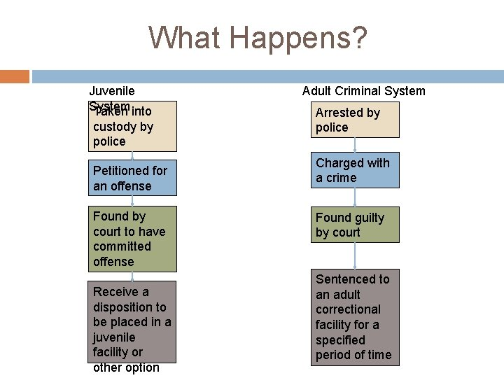 What Happens? Juvenile System Taken into custody by police Petitioned for an offense Found