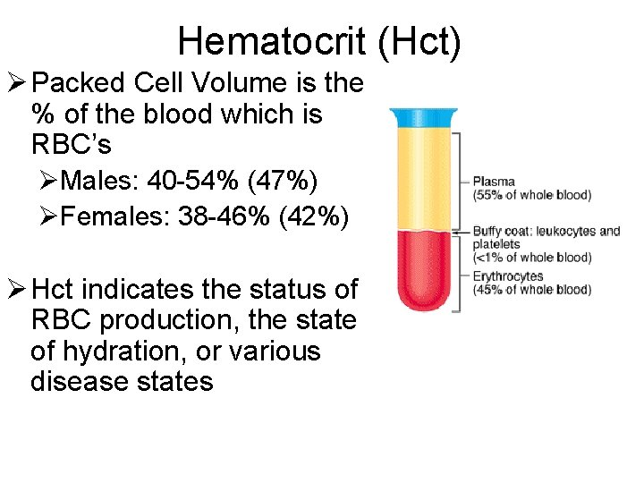 Hematocrit (Hct) Ø Packed Cell Volume is the % of the blood which is