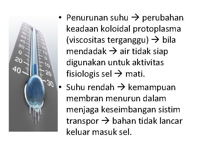 • Penurunan suhu perubahan keadaan koloidal protoplasma (viscositas terganggu) bila mendadak air tidak
