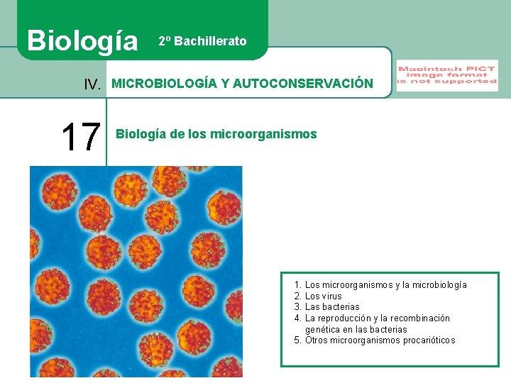 Biología 2º Bachillerato IV. MICROBIOLOGÍA Y AUTOCONSERVACIÓN 17 Biología de los microorganismos 1. Los