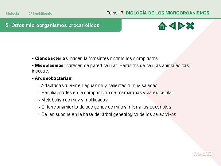 Biología 2º Bachillerato Tema 17. BIOLOGÍA DE LOS MICROORGANISMOS 5. Otros microorganismos procarióticos •