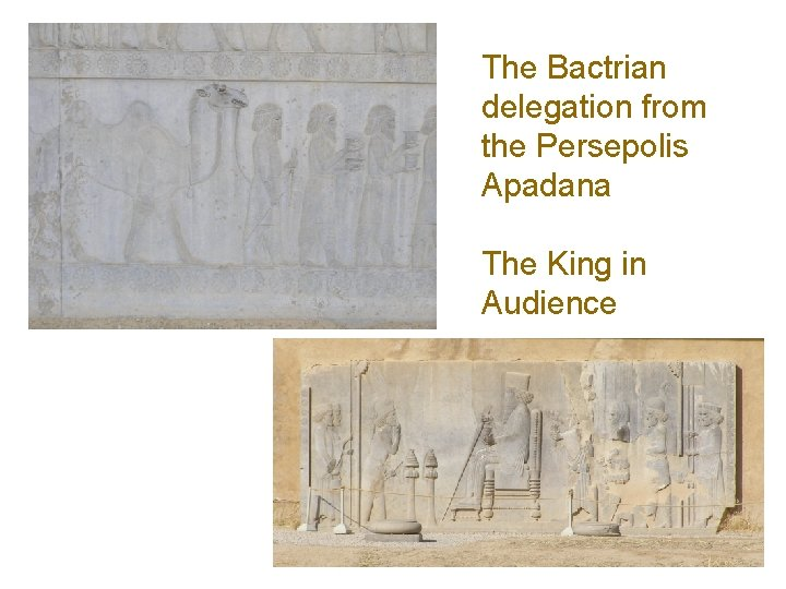 The Bactrian delegation from the Persepolis Apadana The King in Audience